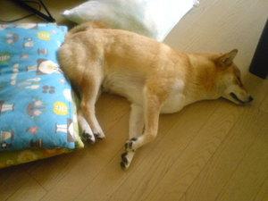 Sleeping9